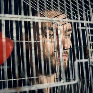 Epic Fool - ph Simone Nervi - mua Mara De Marco - hair Carlo Concato - styling Pro*Lab - model Matteo Polini - ag Brave